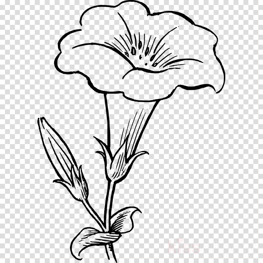 Clip art Drawing Flower Image Vector graphics