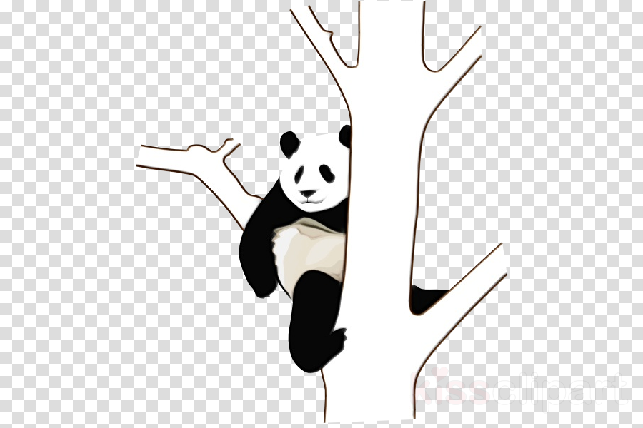 Giant panda Clip art Portable Network Graphics Vector graphics Red panda