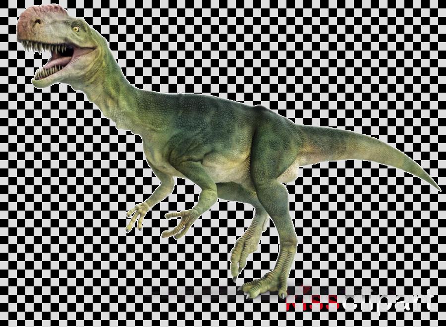 Tyrannosaurus rex Brachiosaurus Reptile Spinosaurus Monolophosaurus