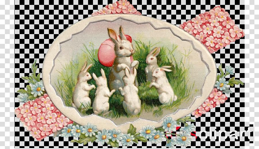 Easter food Easter postcard Easter Bunny