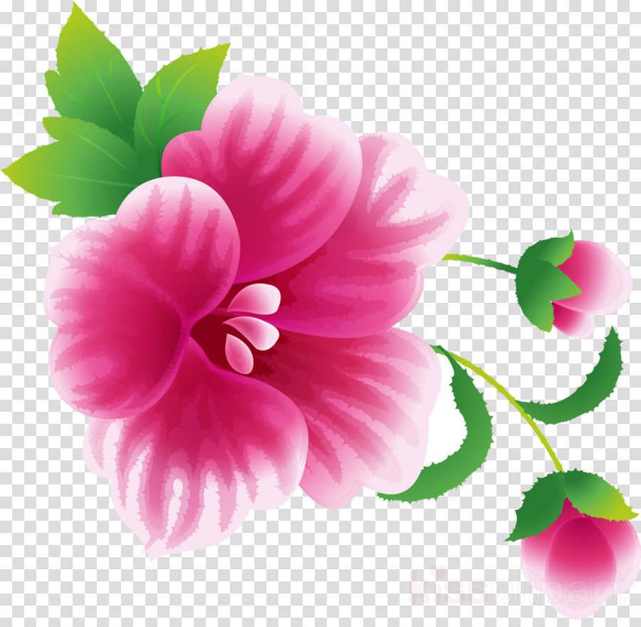 Flower Painting Image Rosemallows Friendship