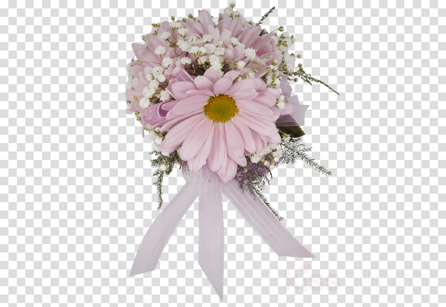 Floral design Transvaal daisy Common daisy Flower bouquet