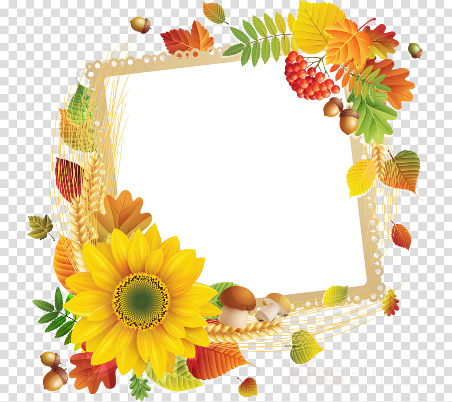 Picture Frames Flower Floral design Photography