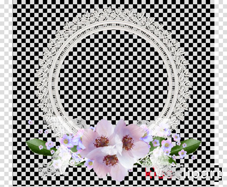 Portable Network Graphics Clip art Image Video Flower