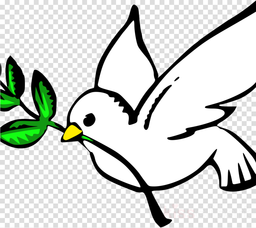 Clip art Pigeons and doves Portable Network Graphics Openclipart Free content