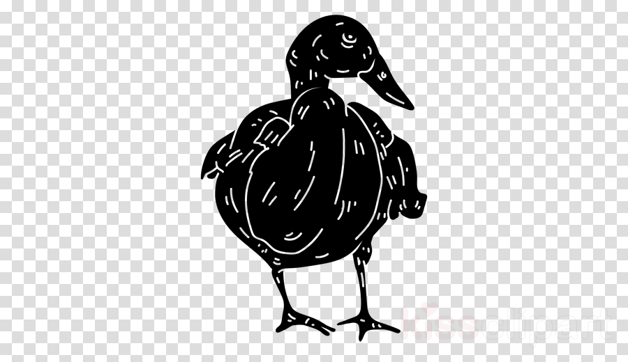 Donald Duck Goose Vector graphics Silhouette