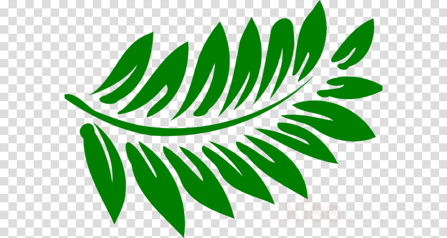 Clip art Hawaiian hibiscus Free content Vector graphics Hibiscus tea