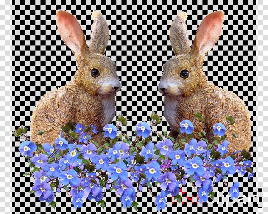 Rabbit Easter Bunny Flower Wedding invitation Image