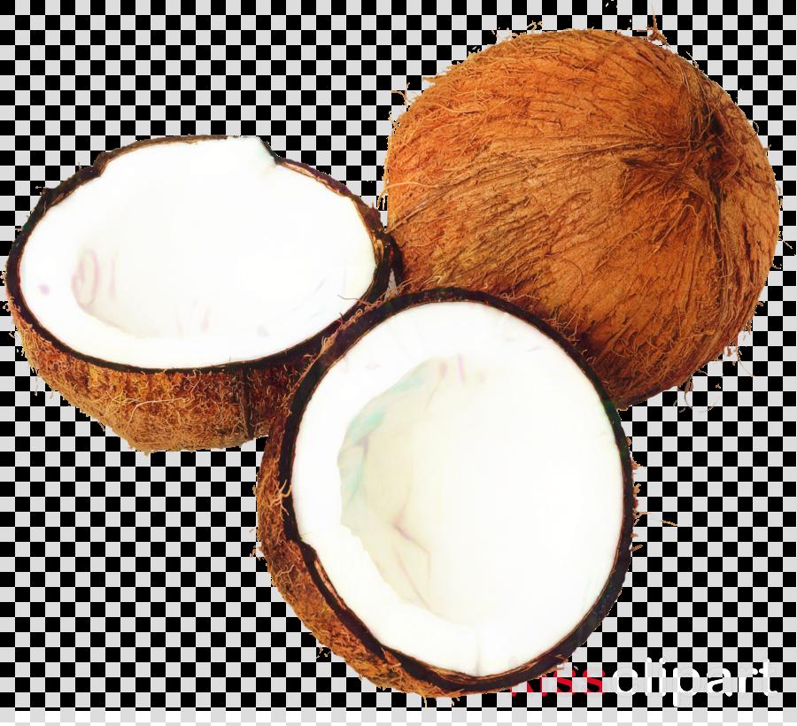 Coconut milk pollachi fresh coconuts Coconut oil Copra