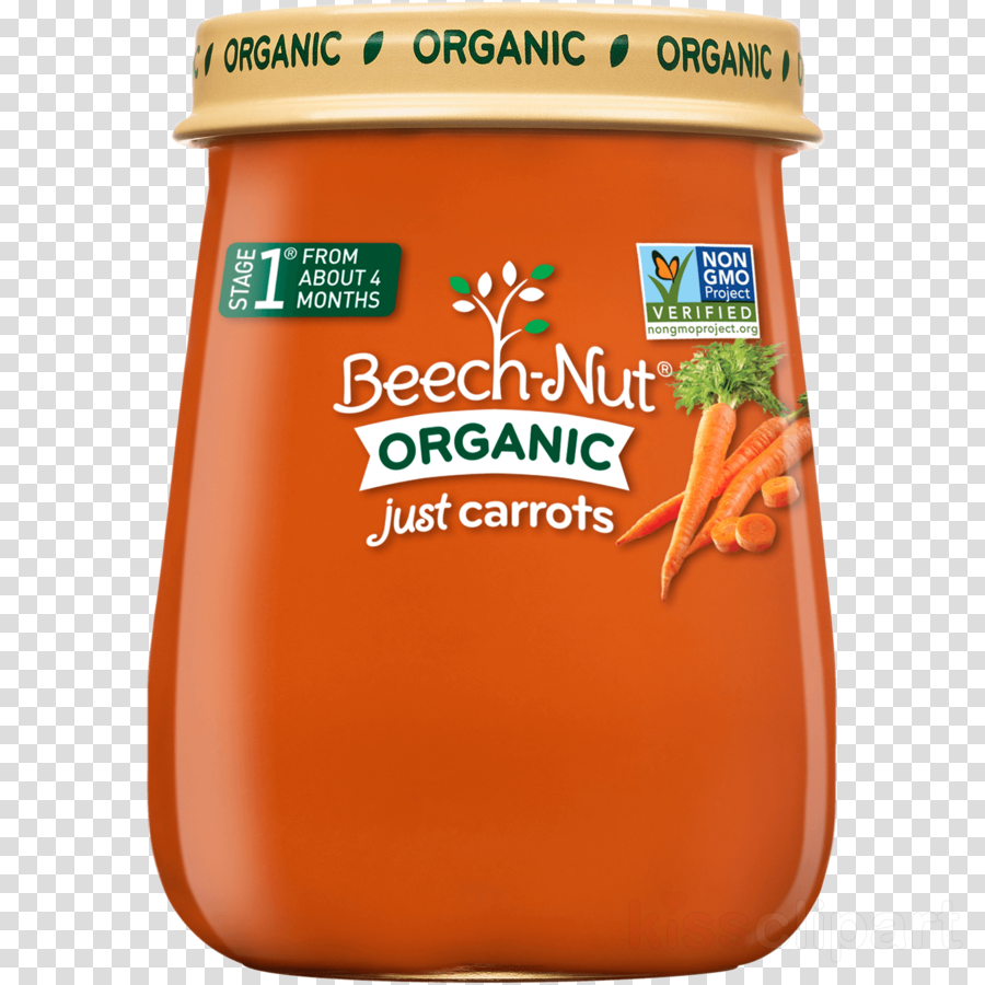 Baby Food Beech-Nut Baby carrot Infant