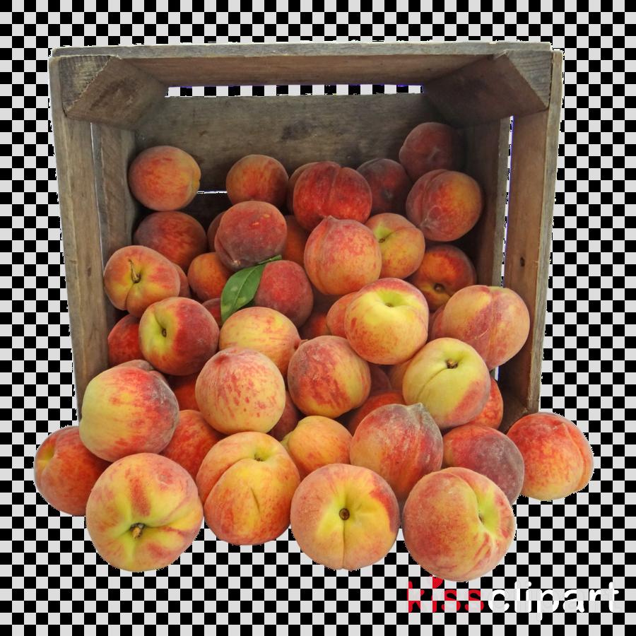 Peach Food Amish Fruit Clausena lansium