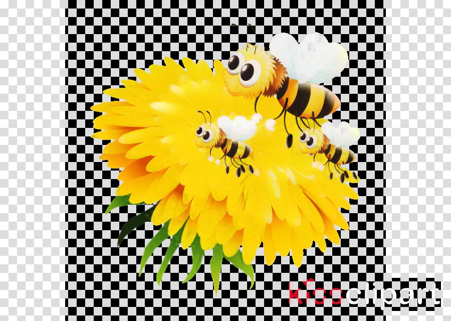 Honey bee Bumblebee Bee pollen Nectar