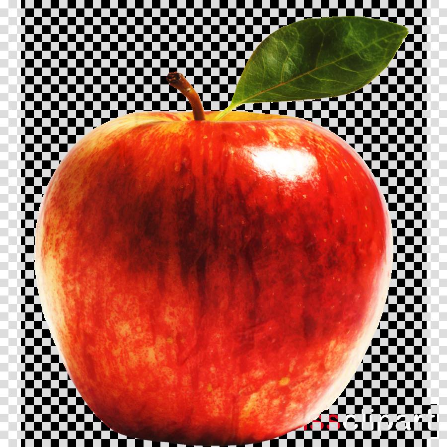 Apple Clausena lansium Red Delicious Fruit Gala