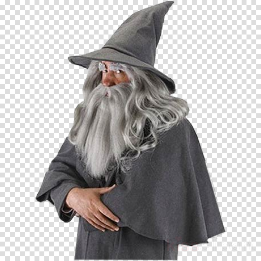 The Hobbit Gandalf Hat Adult Costume The Lord of the Rings