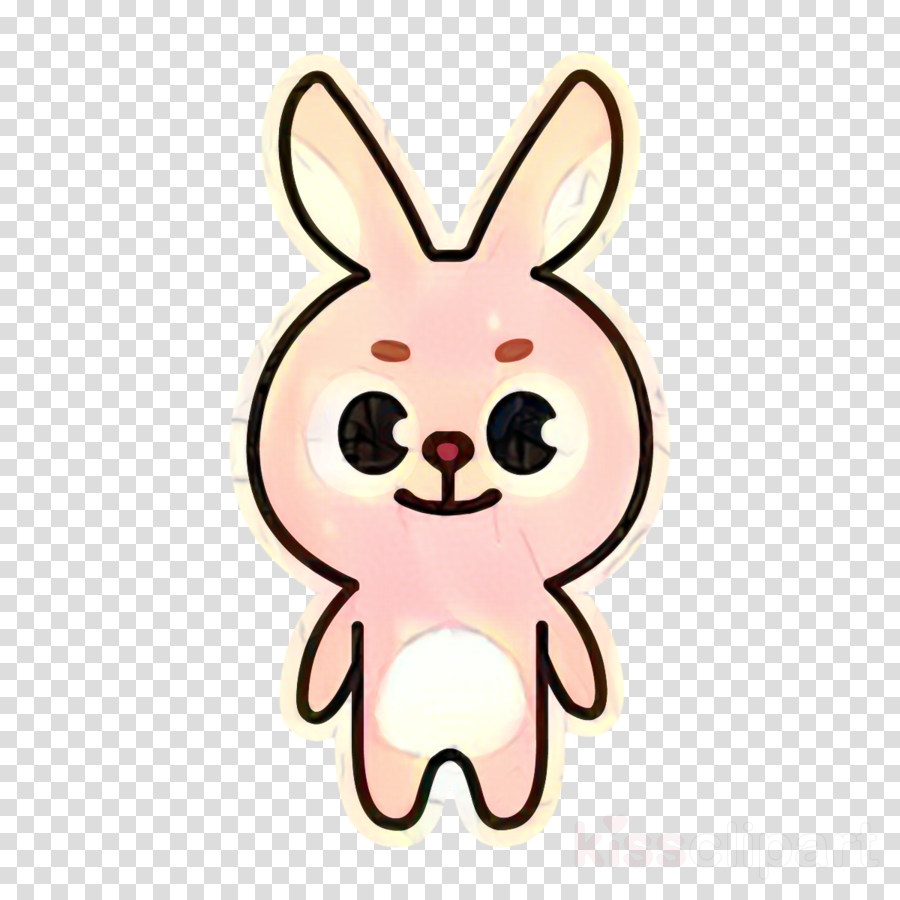 Domestic rabbit Day6 K-pop Mascot