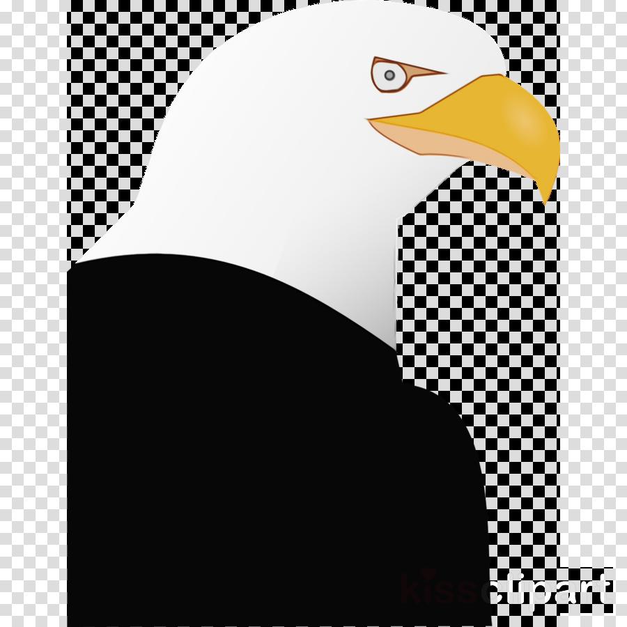 Bald eagle Penguin Clip art Beak Product design