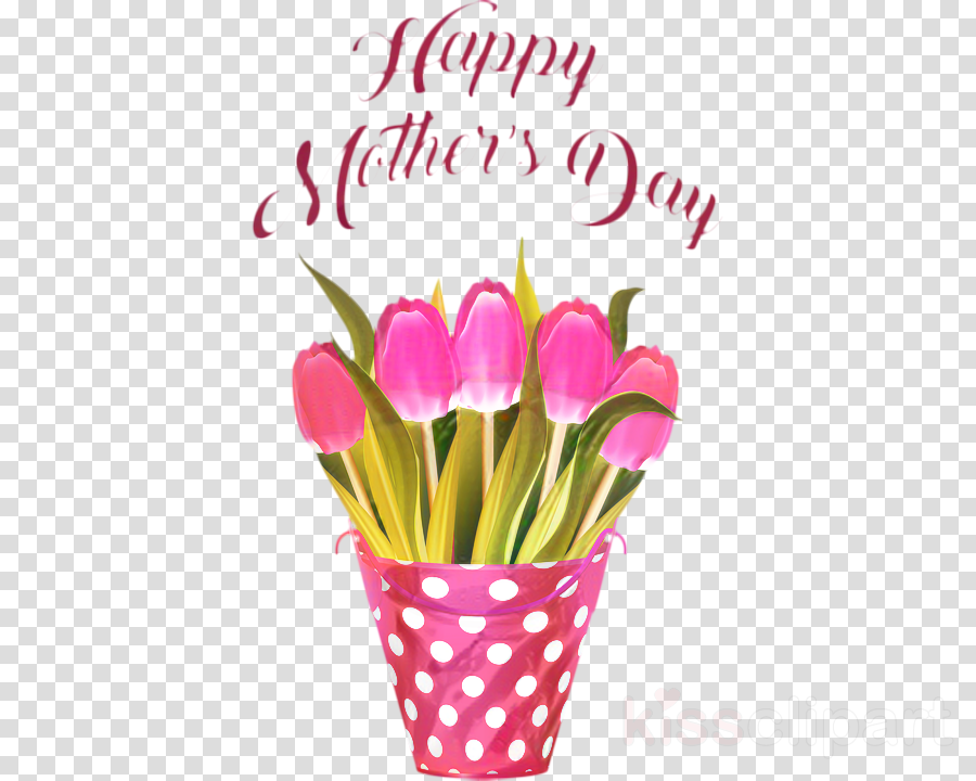 Mother's Day Holiday Gift Image