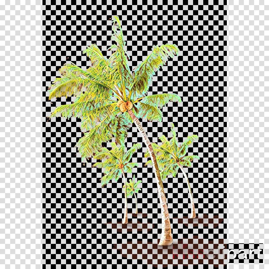 Palm trees Coconut Asian palmyra palm Illustration