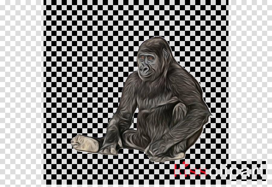 orangutan common chimpanzee sitting statue