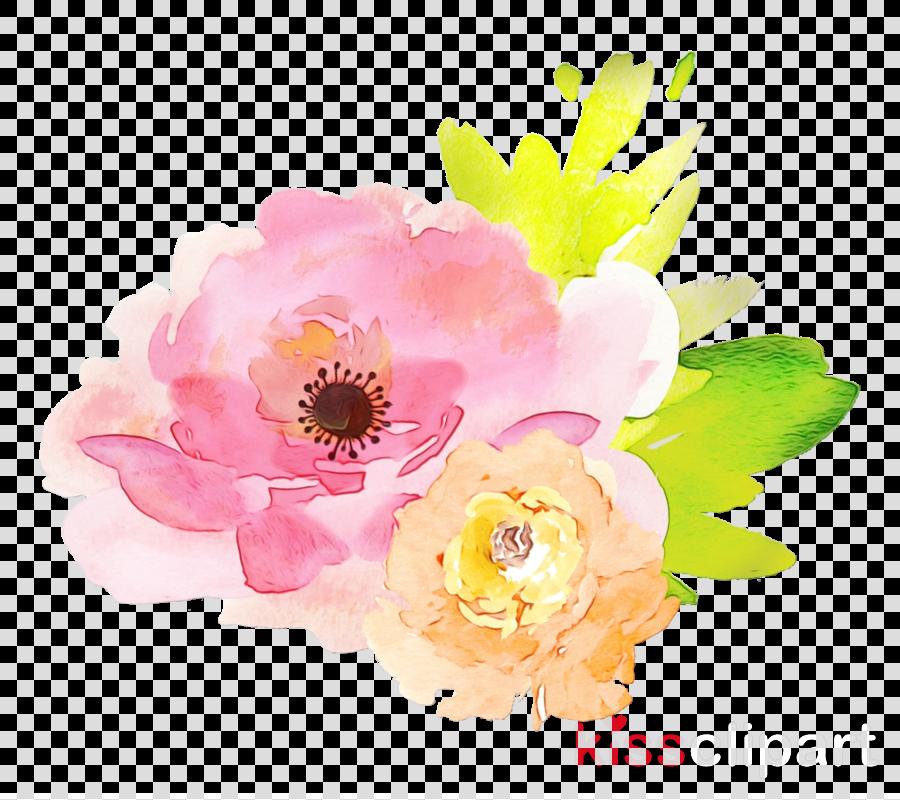 flower pink watercolor paint petal plant