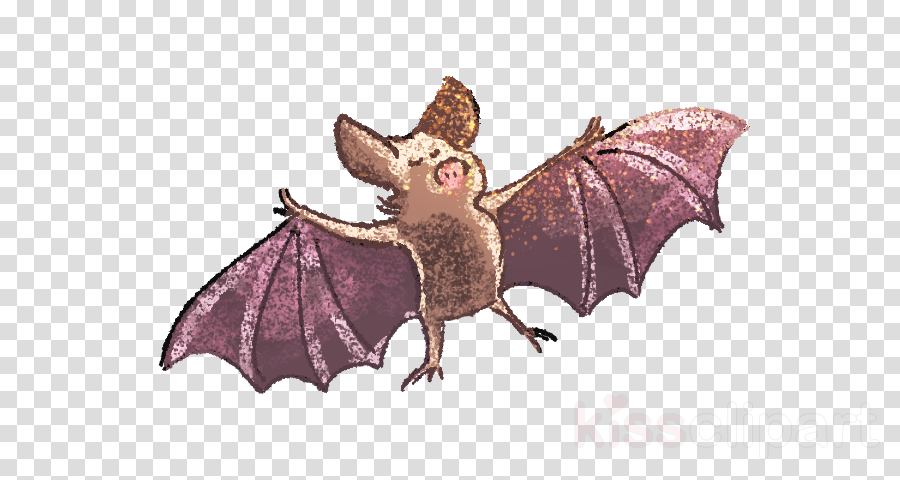bat little brown myotis vampire bat fictional character animation