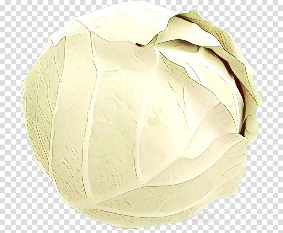 white cabbage petal