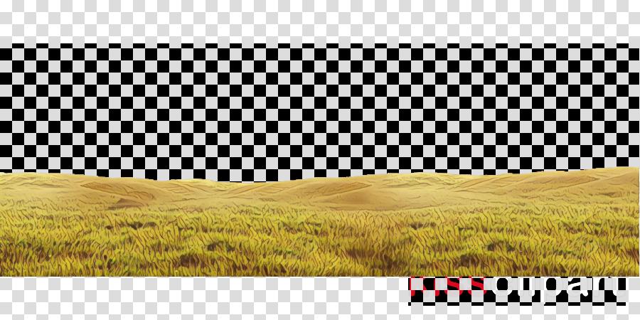 grassland natural environment prairie nature field