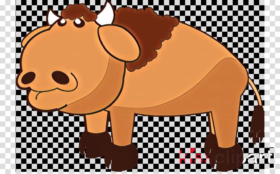 cartoon clip art snout terrestrial animal brown bear