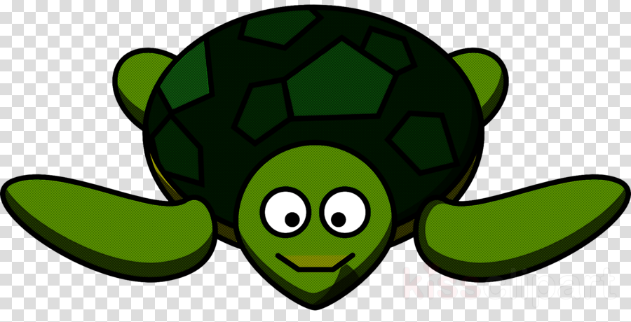 green turtle clip art sea turtle fictional character