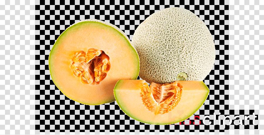 Galia Muskmelon Cantaloupe Melon Fruit Clipart Galia Muskmelon Cantaloupe Transparent Clip Art 1,720 cantaloupe clip art images on gograph. galia muskmelon cantaloupe melon fruit