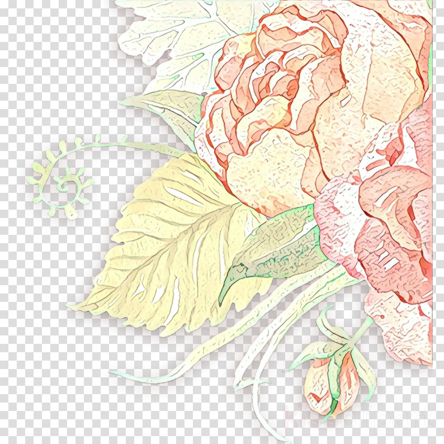Download Flower Plant Cut Flowers Peony Carnation