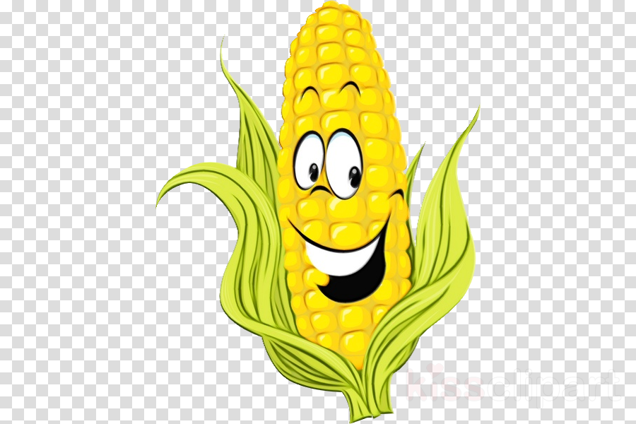 cartoon yellow corn on the cob corn plant