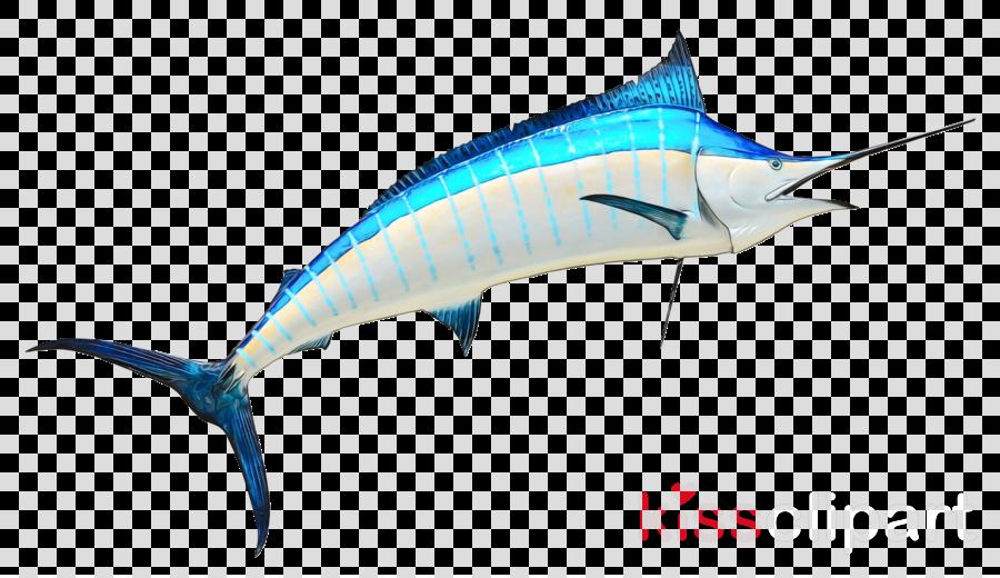 fish sailfish swordfish atlantic blue marlin marlin