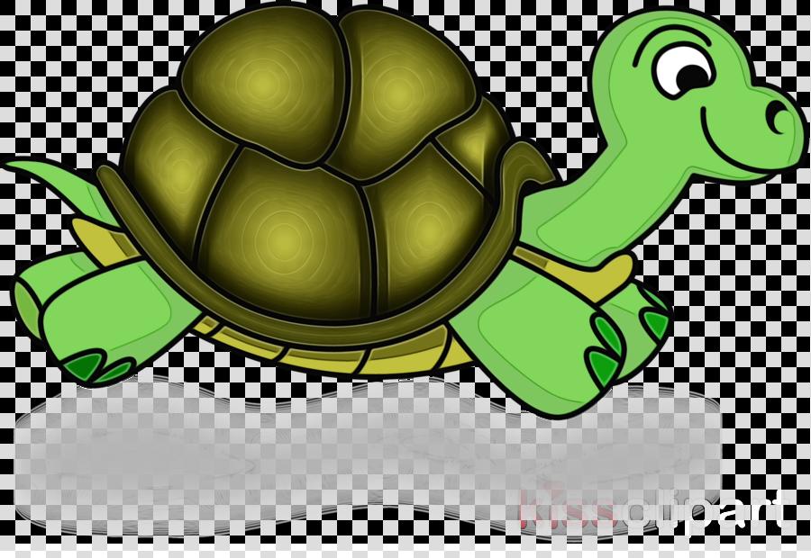 tortoise green turtle clip art pond turtle