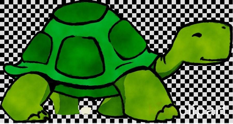 tortoise green clip art turtle animal figure