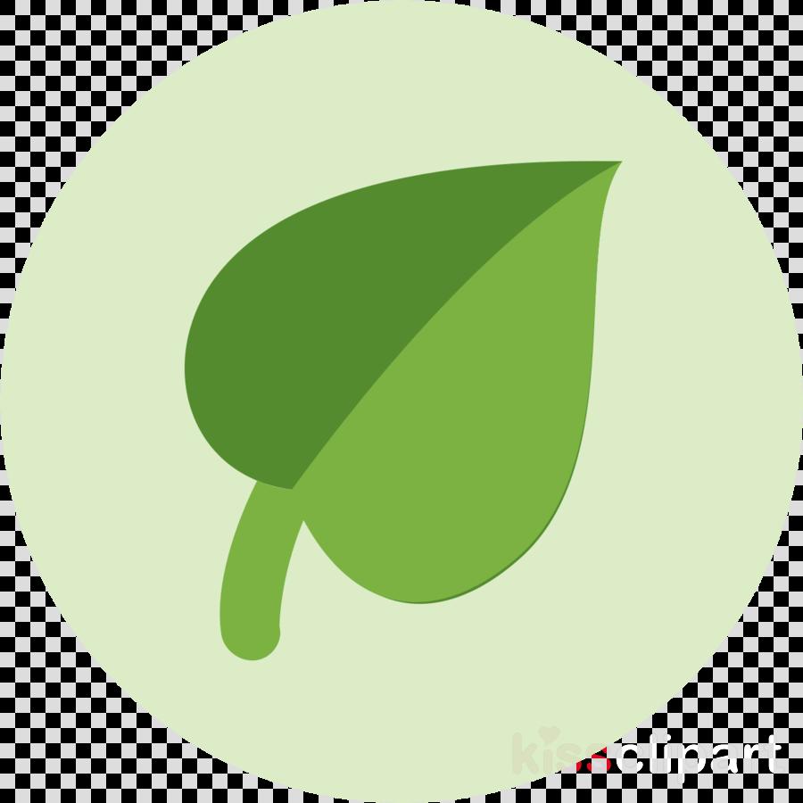 green leaf plate plant fruit