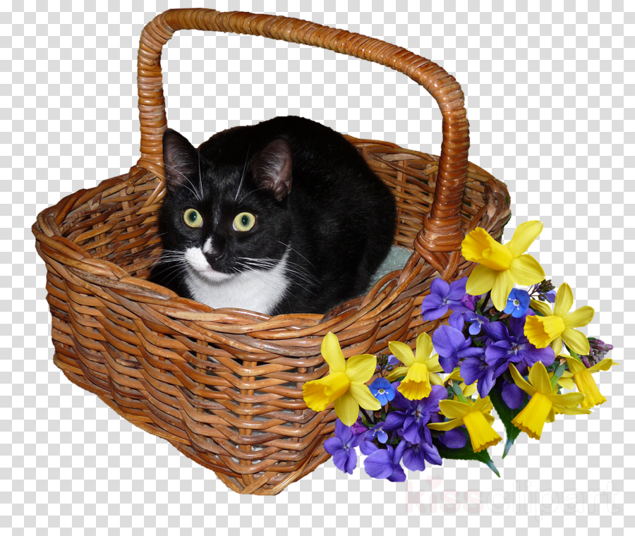 Cat Small To Medium Sized Cats Wicker Basket Picnic Basket