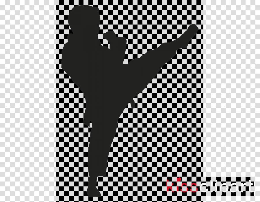 kick karate martial arts baguazhang xing yi quan