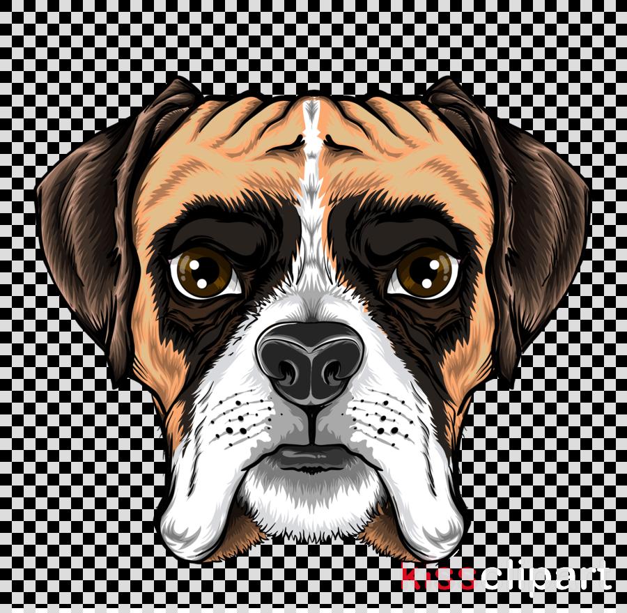 dog dog breed boxer snout cartoon