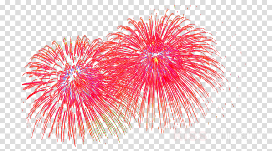 Днем, картинки фейерверк анимация на прозрачном фоне