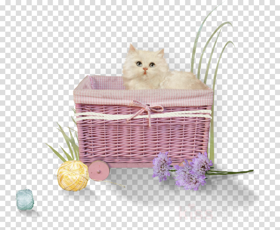 cat persian hamper cage small to medium-sized cats
