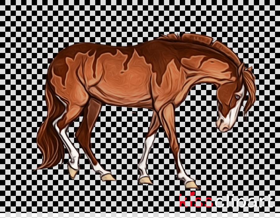 horse sorrel animal figure mare brown