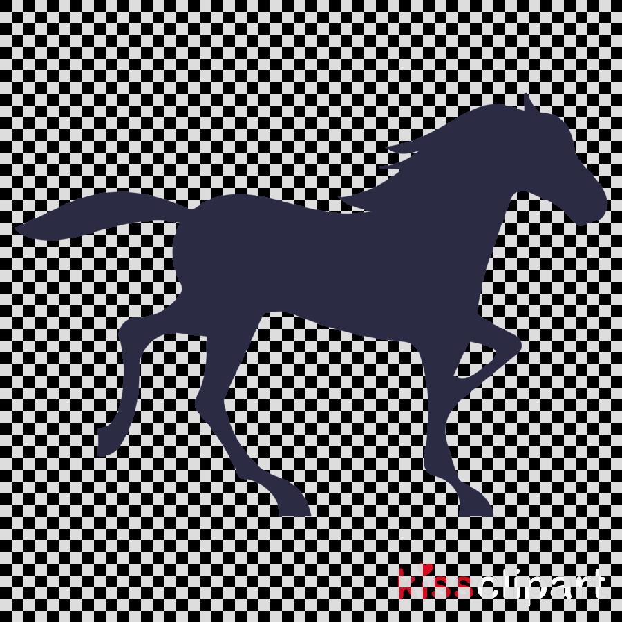 horse animal figure mane silhouette stallion