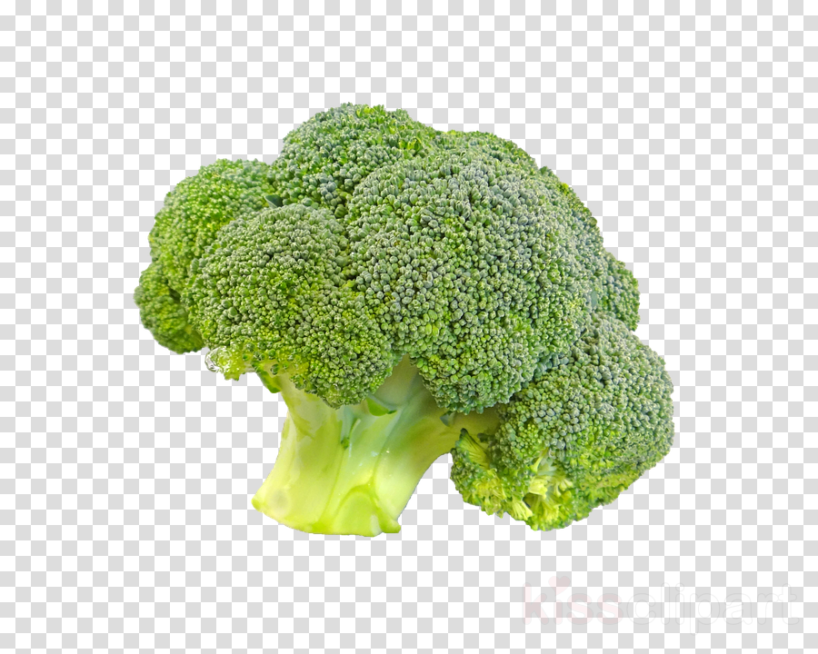 broccoli leaf vegetable cruciferous vegetables vegetable food
