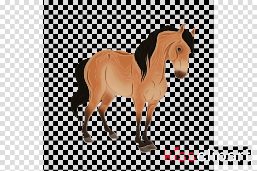 horse animal figure shetland pony mane mare