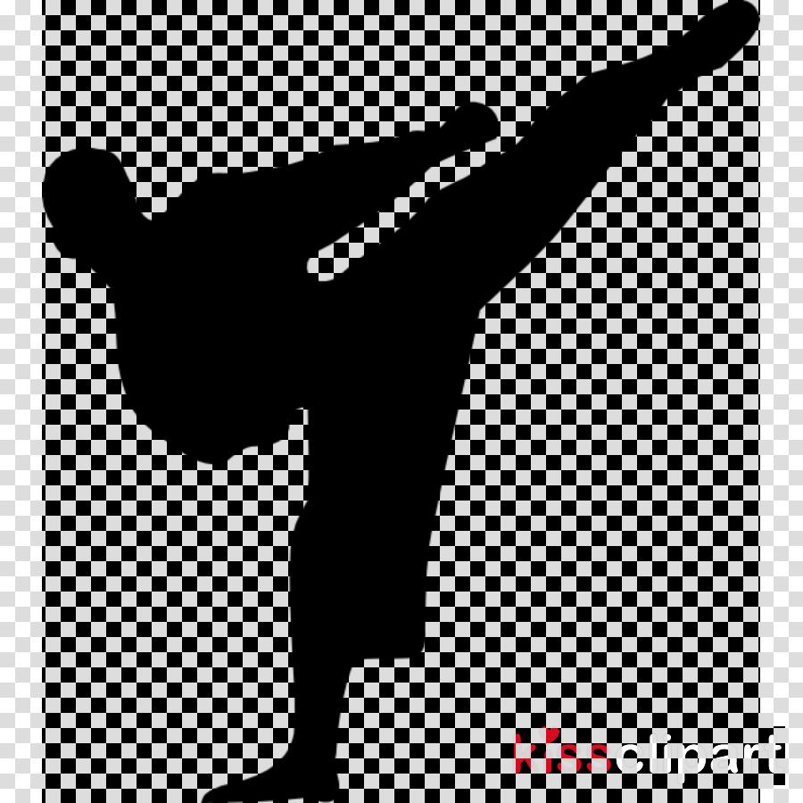 kick capoeira kickboxing athletic dance move baguazhang