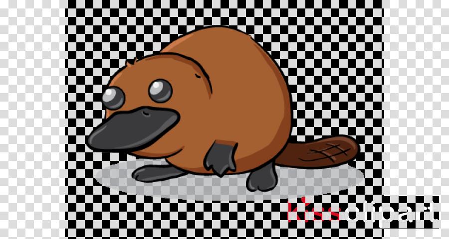 beaver cartoon platypus monotreme groundhog