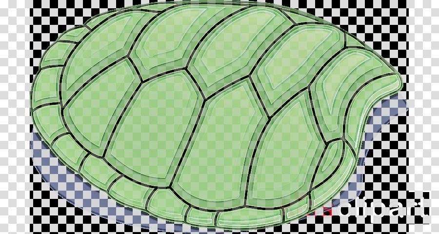 green turtle pond turtle leaf tortoise
