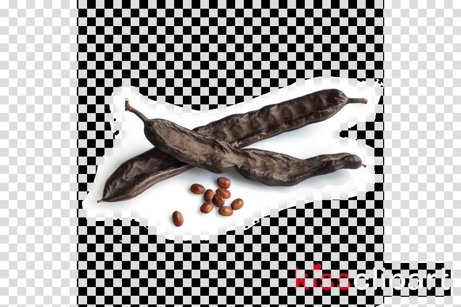 pasilla spice food plant legume