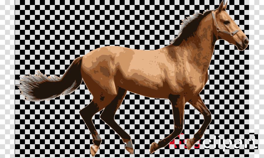 horse animal figure sorrel mare mane